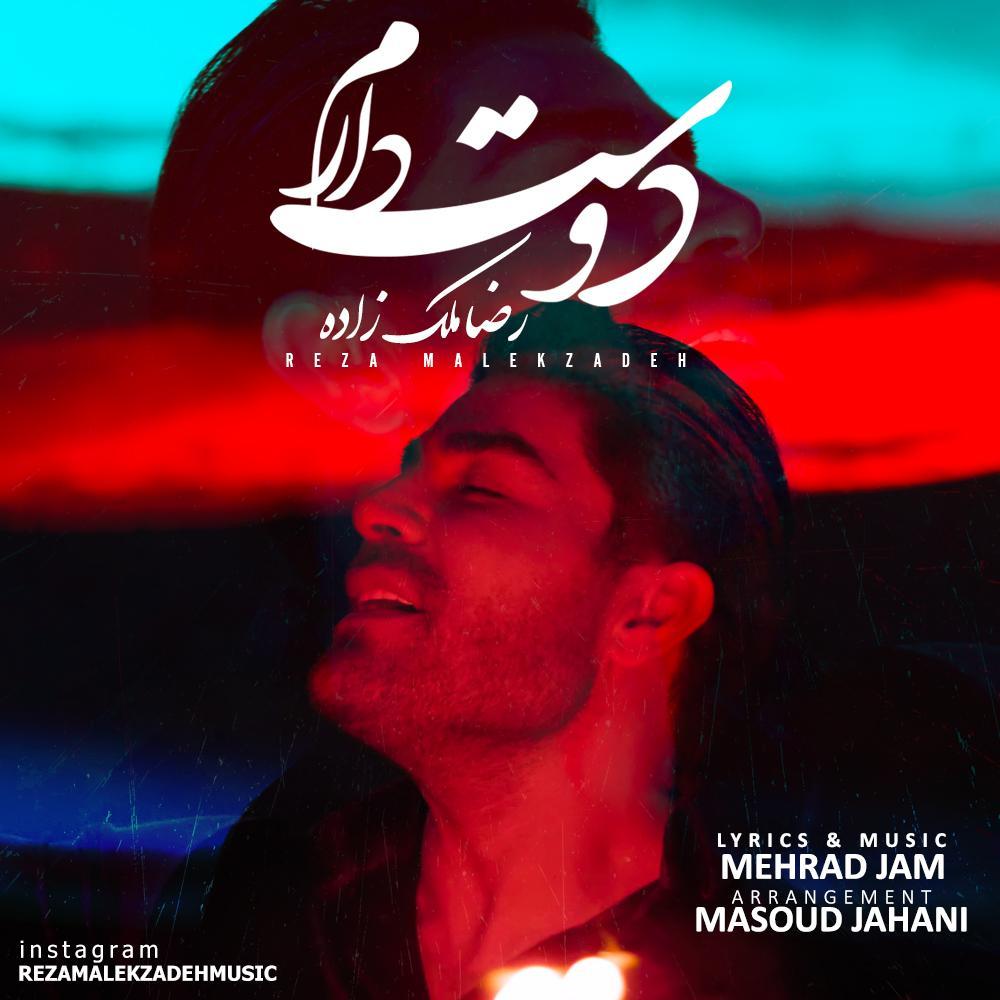 دانلود موزیک ویدیو جدید رضا ملک زاده به نام دوست دارم